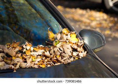 Fallen leaves on the hood of the car. Autumn in the city.