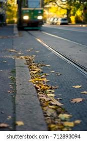 Fallen leaves on tram rails in Helsinki, Finland