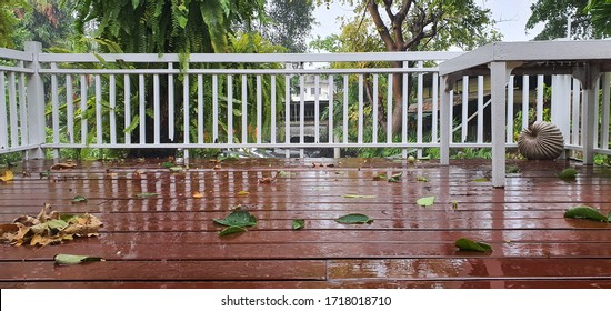 The fallen leaves are on the veranda after the rain.