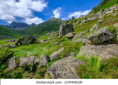 Fallen rocks in a green valley of the french Pyrenees mountains near Aston in Ariege