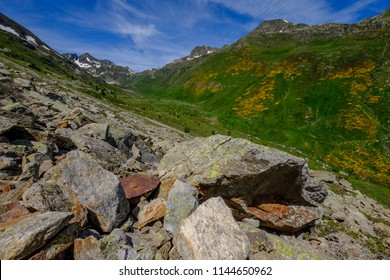 Fallen rocks and pasture with yellow flowers in the french Pyrenees mountains in early summer, near Aston in Ariege