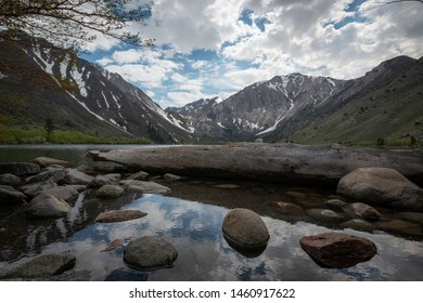 Fallen tree in Convict Lake with beautiful reflections