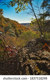 Fallen tree leading out to hillside with fall colors. Buzzard roost chillicothe ohio. Beautiful colors of autumn