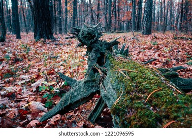 Fallen tree in the middle of deep forest