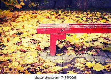 A fallen yellow leaves on a wooden bench in the park. Autumn season