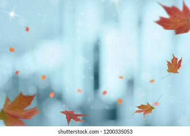 Falling Autumn Maple leaves with background of bokeh of light from building in blue freezing tone. Season change concept. Copy space