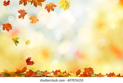 Falling autumn maple leaves natural background .Colorful foliage  - Shutterstock ID 697076155
