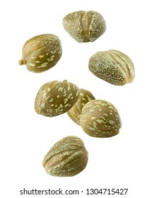 Falling caper isolated on white background, clipping path, full depth of field
