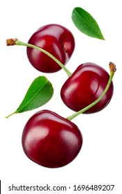 Falling cherries with leaves. Cherries isolate. Cherry on white. Sour cherry.