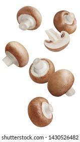 Falling fresh champignon mushrooms, isolated on white background