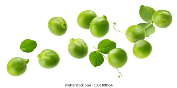 Falling green peas isolated on white background with clipping path
