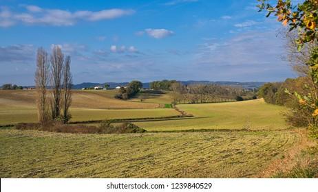 Fallow fields in autumn (fall) taken in the Tarn in Southern France