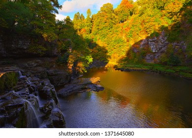The Falls of Clyde on the River Clyde near New Lanark, South Lanarkshire, Scotland.