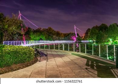 Falls Park in Greenville, South Carolina, SC, USA at Night.