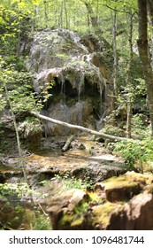 Falls Ridge Preserve The Nature Conservancy Appalachia
