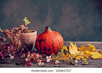 fall-still life with pumpkin, ivy and yellow maple leaves on wooden ground