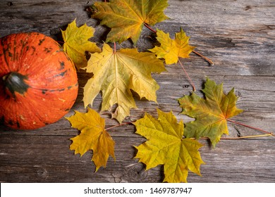 fall-still life with pumpkin, ivy and yellow maple leaves on wooden ground in top view