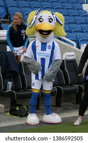FALMER, BRIGHTON, EAST SUSSEX / UNITED KINGDOM - APRIL 28 2019: Sally the seagull mascot at the Arsenal and Brighton and Hove Albion match in the FA Women's Super League (FAWSL).