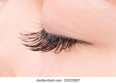 The false eyelashes Asian woman who is in condition to have closed the eyes