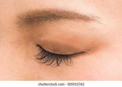 false eyelashes for women