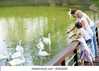 Families with children feeding white swans