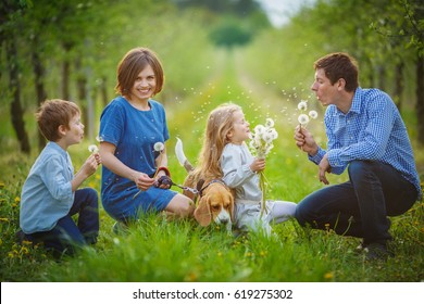 The family arranged a dandelion battle in the spring apple garden. Mom, Dad, son, daughter and their dog blow against each other white dandelions