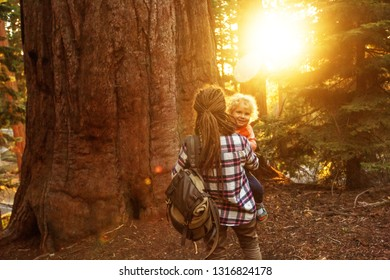 Family with boy visit Sequoia national park in California, USA