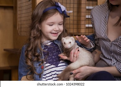 Family in the contact zoo, the mother and daughter are holding a carnivorous white ferret and stroking, a kind animal.