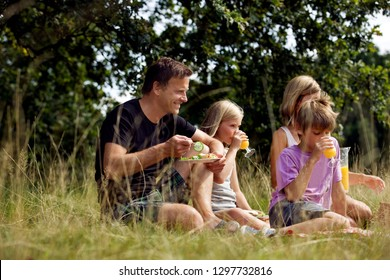 Family enjoying picnic in countryside together