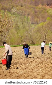 Family of farmers sowing seeds mixed with fertilizer on their land