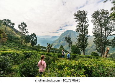 Family of father and two kids enjoying breathtaking views over mountains and tea plantations in Ella Sri Lanka