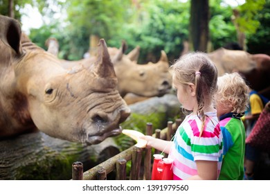 Family feeding rhino in zoo. Children feed rhinoceros in tropical safari park on summer vacation in Singapore. Kids observe animals. Little girl and boy look at rhinos. Wildlife amusement center.