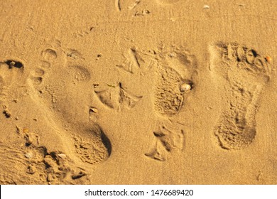 family footprints in the sand beach, travel fun vacation