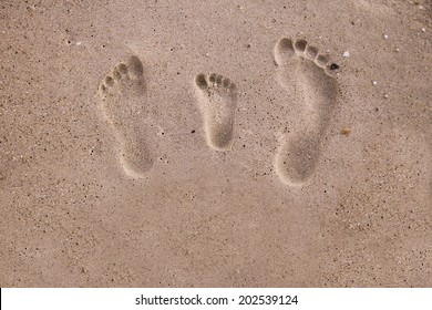 a family footprints in the sand on the seashore