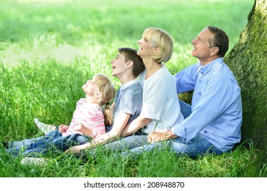 Family of four sitting under tree and looking up
