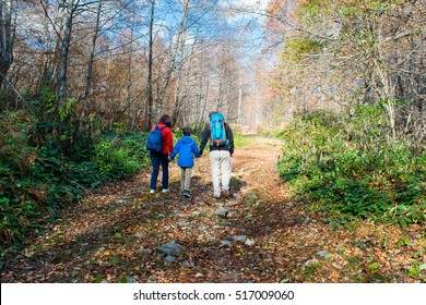 Family hiking in the forest