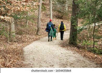 a family hiking on a forest trail