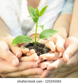 Family holding young green plant in hands. Ecology concept