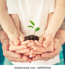 Family holding young sprout in hands. Earth day holiday concept