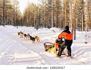 Family in Husky dog sled in Finland in Lapland in winter.