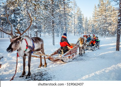 Family with kids at reindeer safari in winter forest in Lapland Finland
