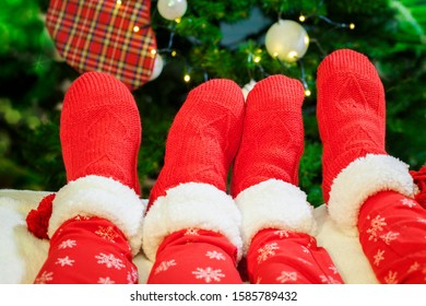 Family Legs with knitted red socks Resting in front of Christmas Tree