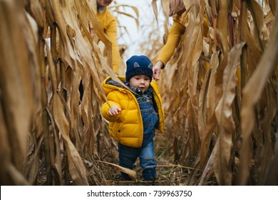 Family look  clothe child walking through corn field