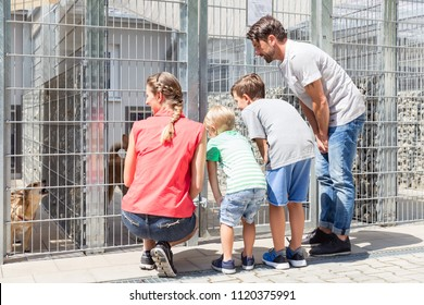 Family looking to adopt a pet from animal shelter watching the poor pet in cage