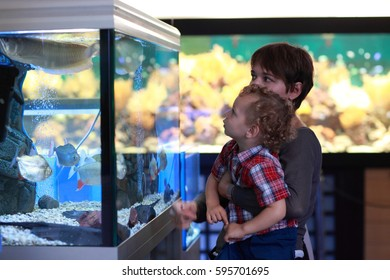 Family is looking at fish at aquarium