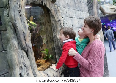 Family looking at snake in a zoo