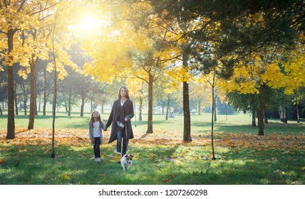 Family love abstract: autumn park, mother and daughter walking with dog in green grass