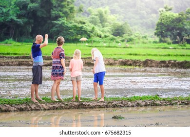 family lover holiday in rice field father mother son daughter walk run in field farmer selective focus flare light