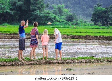 family lover holiday in rice field father mother son daughter walk run in field farmer selective focus