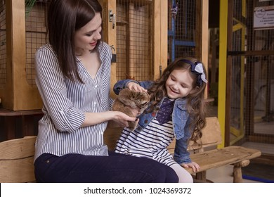 Family mom and daughter in a contact zoo are holding Lemur Slow Loris Stare.